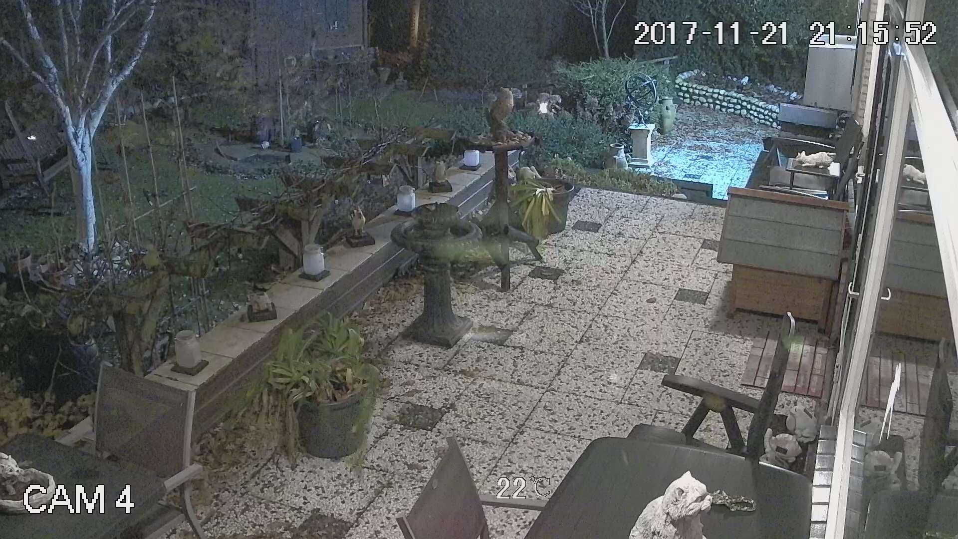 Voorbeeld Dahua SD42212I beeldweergave
